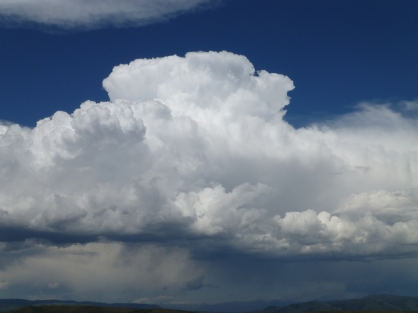 Small cumulonimbus cloud forming